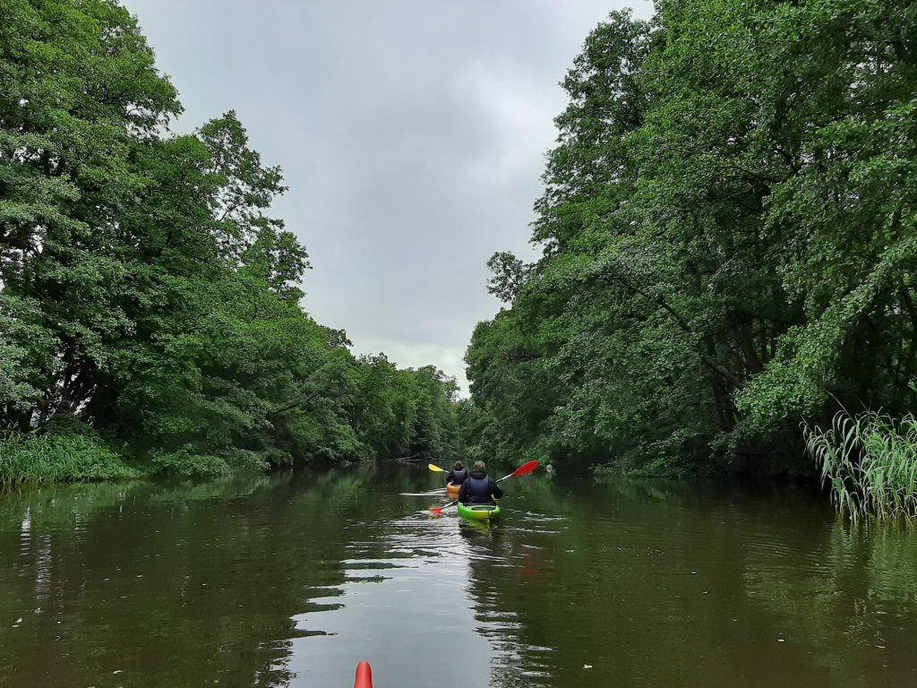 Siuntion joki meloen vehreä